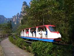 观光小火车图片