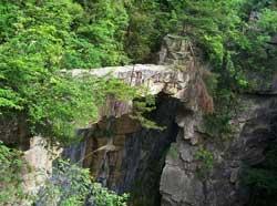 仙人桥图片